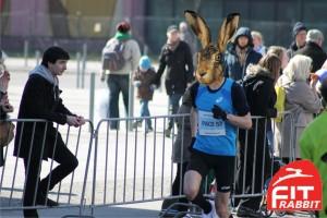 Hase beim Halbmarathon